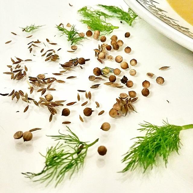 Épices douces, graines de fenouil, de cumin et de coriandre – Copyright © Gratinez