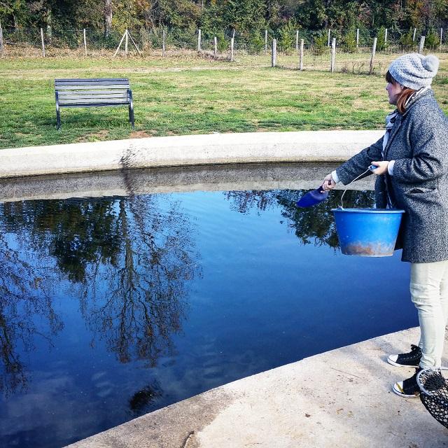 Marie-Lou expérimente la gestuelle pour nourrir les esturgeons males du bassin - Copyright © Gratinez