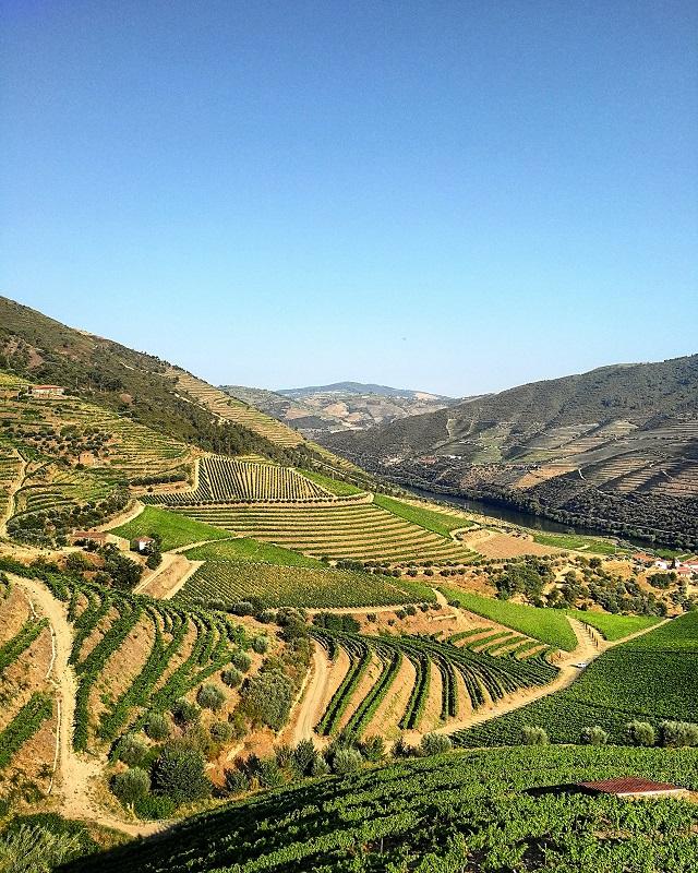 La vallée du Douro, vue depuis la Quinta da Grincha, maison de Churchill's – Copyright © Gratinez
