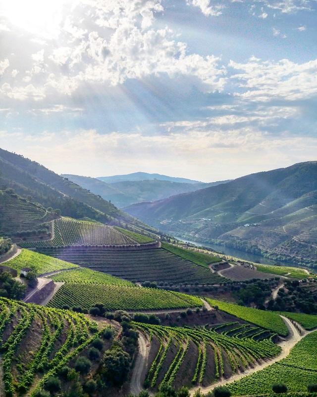 La vallée du Douro, vue depuis la Quinta da Gricha, maison Churchill's – Copyright © Gratinez