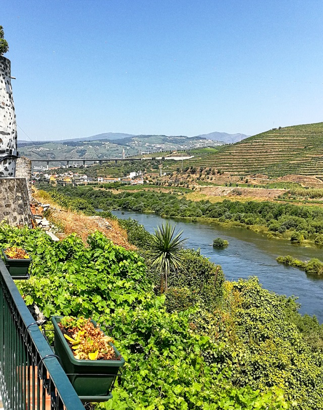 Le fleuve du Douro, depuis la Quinta de Marrocos – Copyright © Gratinez