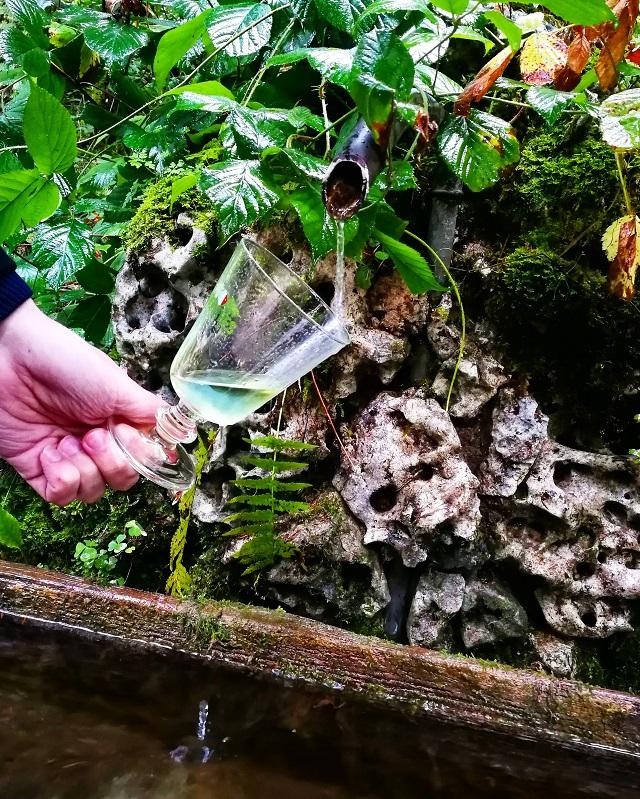 Fontaine à absinthe naturelle, région Jura et Trois Lacs – Copyright © Gratinez